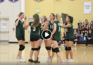 Lady Wildcat Volleyball
