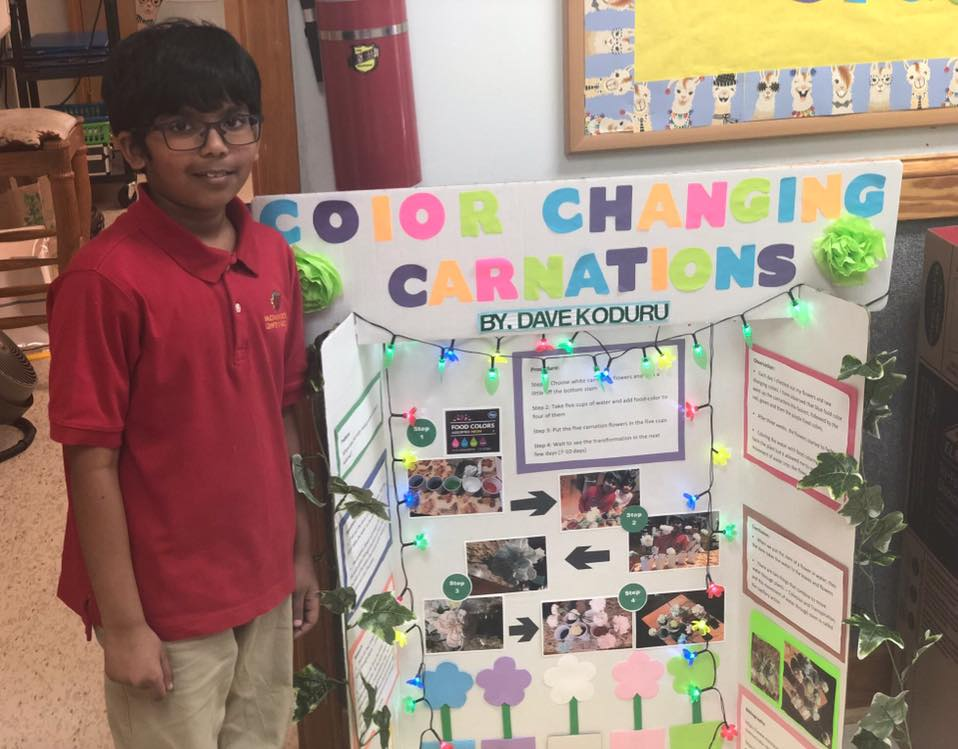 2019-Science-Fair-Elementary--Alpharetta  Th Grade Science Projects Sports on reading science projects, question and hypothesis science projects, baking soda rocket science projects, united states 5th grade projects, exhibition science projects, 4 grade projects, 5th grade ela projects, gifted and talented science projects, college science projects, band science projects, pinterest preschool science projects, k5 science projects, volcano science projects, magnetic simple projects, teachers science projects, the hobbit science projects, 6th grade reading projects, all the science projects,