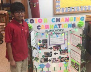 2019 Science Fair Elementary School Alpharetta