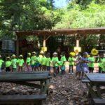 Summer Safari Week at Summer Camp