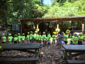 Summer Safari Week at Summer Camp