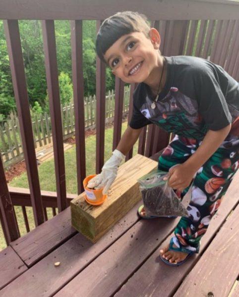 Planting Seeds Pre K and Kindergarten Remote Learning