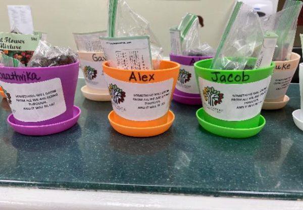 Pre-K Kindergarten DIY Plant Deliveries