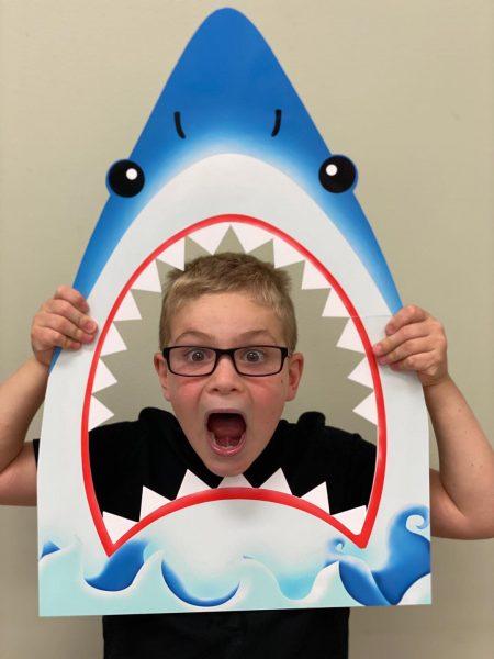 Fun with Sharks at Summer Camp