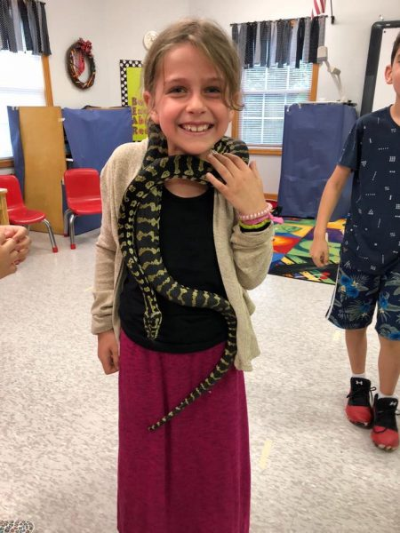 Learning about reptiles at summer camp in alpharetta