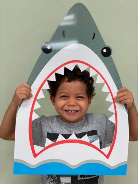 Shark Photos at Summer Camp