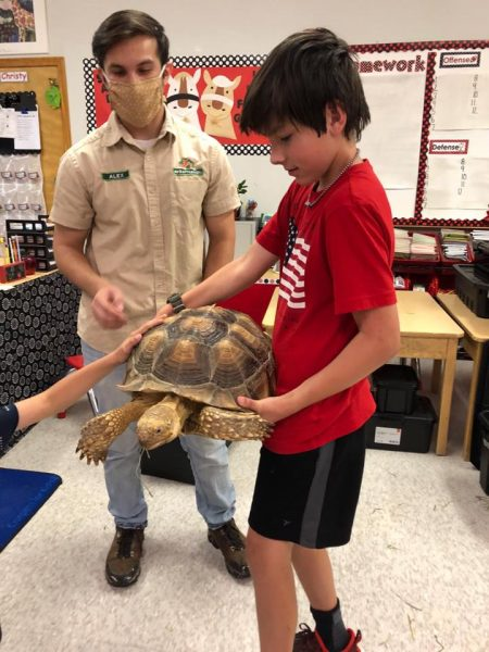 The Reptile Guy Turtle at Summer Camp